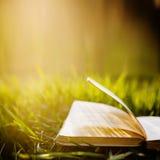 Sommer backgound mit offenem Buch Lizenzfreies Stockfoto
