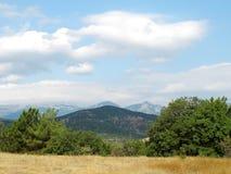 Sommer, Berg, Wald Stockfotografie