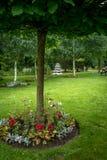 Sommer blüht ringsum die Basis eines Baums Stockfoto