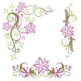 Sommer, Blumen, Satz Stockfotografie