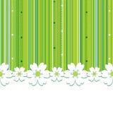 Sommer-Blumenhintergrund Stockfoto