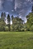 Sommer-düsterer Tag im Park durch hdr Stockbilder