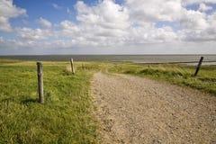 Sommer in dem Wadden-Meer lizenzfreies stockbild