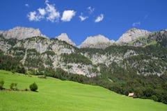 Sommer in den Alpen Lizenzfreie Stockfotografie
