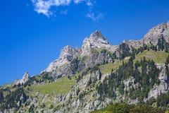 Sommer in den Alpen Stockfotos