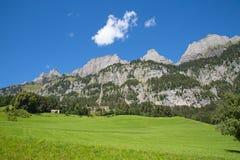 Sommer in den Alpen Lizenzfreie Stockfotos