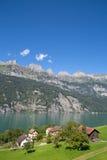 Sommer in den Alpen Stockfoto