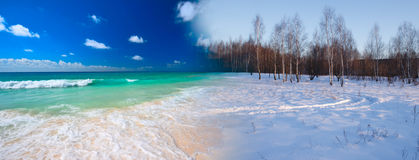Sommer, der zum Winter umwandelt Lizenzfreie Stockfotografie