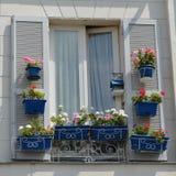 Sommer-Fenster-Anzeige Stockfotografie