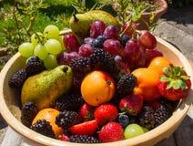 Sommer-Früchte Lizenzfreie Stockfotos