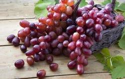 Sommer-Frucht und Beeren Lizenzfreies Stockbild
