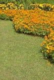 Sommer-Garten Lizenzfreie Stockfotografie