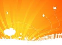 Sommer-Garten-Hintergrund Stockfoto