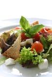 Sommer-Garten-Salat lizenzfreie stockbilder