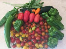 Sommer-Gemüse Lizenzfreies Stockfoto