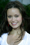 Sommer Glau stockfotos
