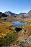 Sommer in Grönland Stockfoto