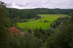 Sommer, grünes Feld, Wald Lizenzfreie Stockfotos