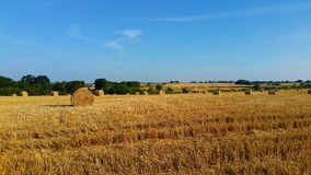 Sommer Hay Fields Stockbilder