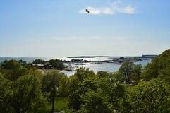 Sommer in Helsinki Kaivopuisto, Finnland lizenzfreie stockbilder