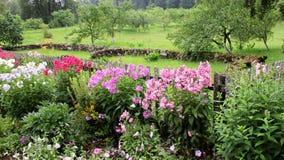 Sommer im Garten lizenzfreie stockbilder