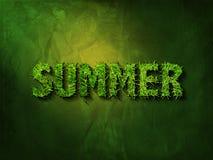 Sommer im Grasschrifttyp Stockfotografie