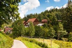 Sommer im Schwarzwald Stockfoto