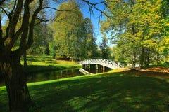 Sommer im Stadtpark Lizenzfreies Stockbild