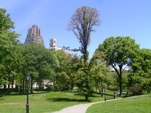 Sommer innerhalb des Central Park Lizenzfreies Stockfoto