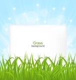 Sommer-Karte mit grünes Gras-und Papier-Blatt Stockfotos