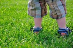 Sommer - kleine Jungen-Füße, die im grünen Gras stehen Stockfotografie