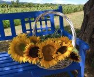 Sommer-Korb von Sonnenblumen herein stockfoto