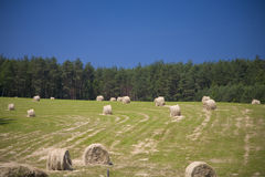 Sommer landscape. Landscape whit blue sky and green hill in Poland royalty free stock photo