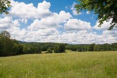 Sommer-Landschaft in Österreich Lizenzfreies Stockfoto