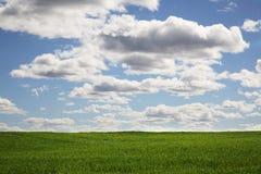 Sommer-Landschaft lizenzfreie stockfotografie