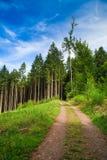 Sommer-Landschaft stockbilder