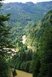 Sommer-Landschaft stockbild