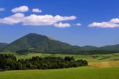 Sommer-Landschaft Stockfotografie