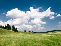 Sommer Landschaft Lizenzfreie Stockfotografie