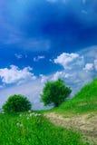 Sommer-Landschaft Lizenzfreie Stockfotos