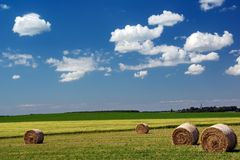 Sommer-Landschaft Lizenzfreies Stockbild