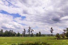 Sommer-Landschaft mit den Schafen, die in Warwickshire, England weiden lassen Stockbild