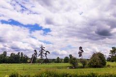 Sommer-Landschaft mit den Schafen, die in Warwickshire, England weiden lassen Lizenzfreies Stockbild