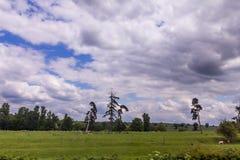 Sommer-Landschaft mit den Schafen, die in Warwickshire, England weiden lassen Stockbilder