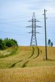 Sommer-Landschaft mit Weizen-Feld und elektrischen Pfosten mit Drähten Stockfotos
