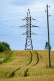 Sommer-Landschaft mit Weizen-Feld und elektrischen Pfosten mit Drähten Lizenzfreie Stockfotos