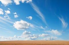 Sommer-Landschaft mit Weizen-Feld und Wolken Lizenzfreie Stockfotografie