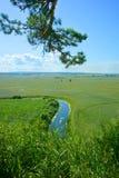 Sommer, Landschaft, Natur, See, Wald und Feld Stockbilder