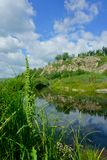 Sommer, Landschaft, Natur, See, Wald und Feld Lizenzfreie Stockbilder