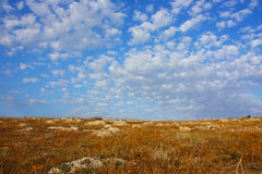 Sommer landskape Lizenzfreie Stockbilder